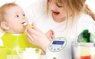 Топ лучших производителей детского питания на 2020 год, Детское пюре