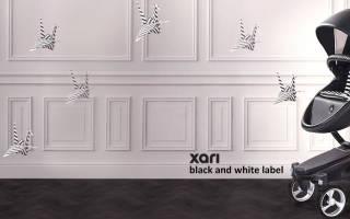 Детская коляска Mima Xari Flair 3G 2 в 1 — подробные характеристики, отзывы, плюсы и минусы
