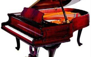 Как выбрать лучший рояль, обзор брендов.