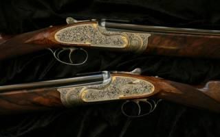 Лучшие винтовки и ружья для охоты со своими достоинствами и недостатками
