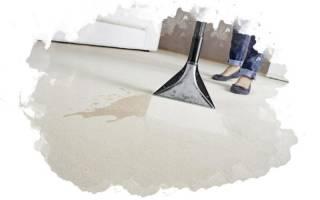 Лучшие средства для чистки домашних ковров