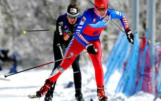 Как выбрать чехол для лыж, лучшие модели 2020