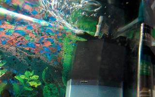 Как выбрать аэратор для аквариума: Пузырьки в аквариуме компрессор создаёт не только для красоты