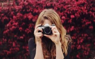Любителям фото-искусства — зеркальные фотокамеры для начинающих на 2020 год